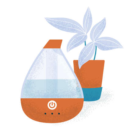 Electric humidifier and a house plant