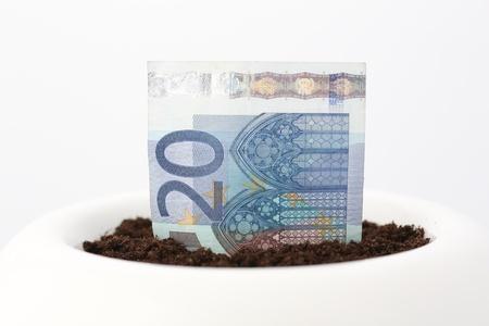 twenty euro banknote: A twenty Euro banknote growing from soil in trendy white flower pot