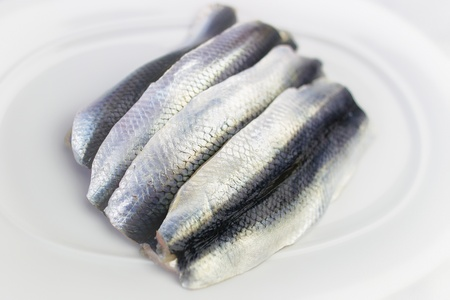 Four raw herring fish lying on white plate ready for cooking Banco de Imagens - 24549653