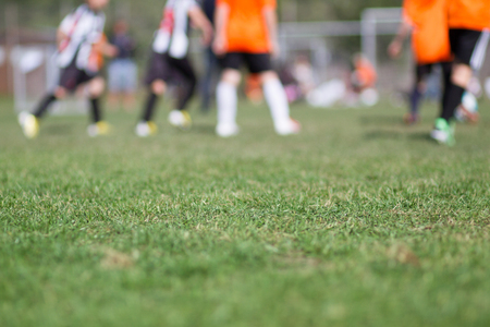 soccer pitch: Close-up of green grass at football (soccer) pitch with blurred players in the background. Stock Photo
