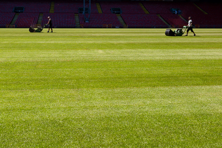 Blurred greenkeepers preparing the lawn at large soccer stadium. photo