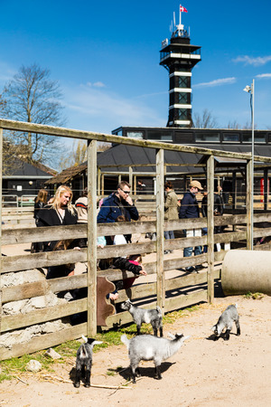 zoological: COPENHAGEN, DENMARK - APRIL 18, 2015: The goat enclosure at the popular Danish tourist attraction The Copenhagen Zoological Garden welcomes visitors on a sunny day during spring.