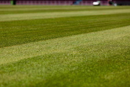 upcoming: Perfect green soccer pitch ready for the upcoming soccer season. Stock Photo