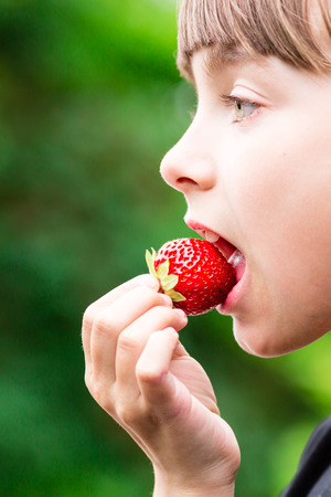 scandinavian girl: Close-up of young scandinavian girl holding and eating fresh red strawberry fruit outdoors on green blurred background. Stock Photo
