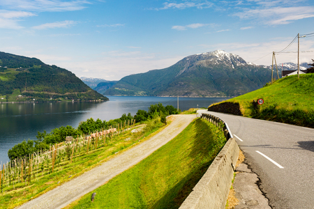 hardangerfjord: Nature scenery near Hardangerfjord in Western part of Norway on a summer day.