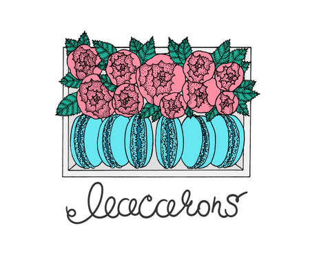 Set of macarons in box with peonies. Hand drawn illustration. sketch.