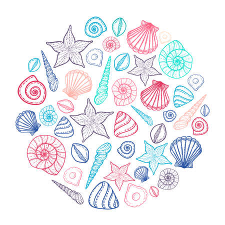 Poster with seashells and starfishes. Marine background. Hand drawn vector illustration in doodle style. Sketch