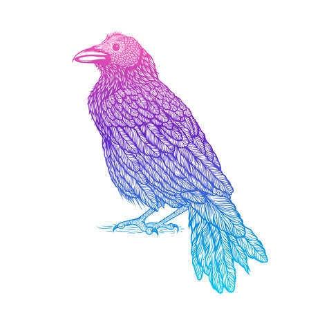 Illustration of raven line art style. Vector illustration of crow hand drawn tattoo Illustration