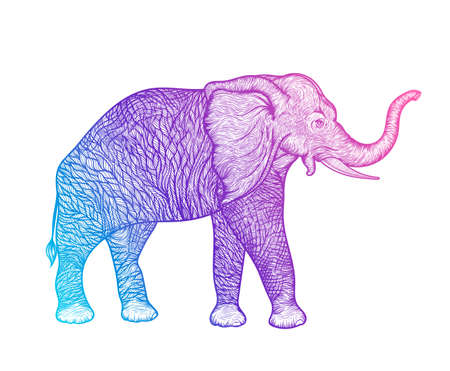 Olifant in profiel lijntekeningen boho ontwerp. vector illustratie Stock Illustratie