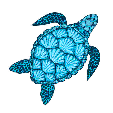 Sea turtle in line art style. Hand drawn vector illustration. Top view. Design for coloring book.