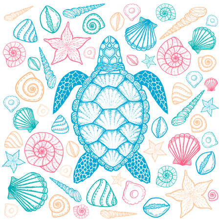 Sea turtle and shells in line art style. Hand drawn vector illustration. Top view. Design for coloring book. Set of ocean elements Illustration