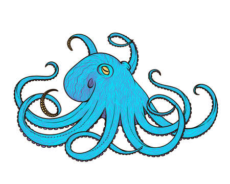 Vector illustration of octopus line art style. Design for t-shirt, posters. Sketch Illustration