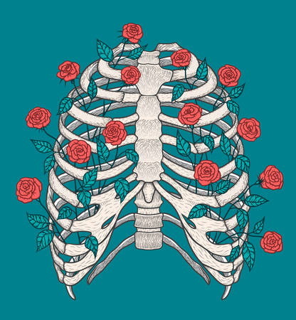 Illustration of human rib cage with roses. Line art style. Boho vector realistic Illustration