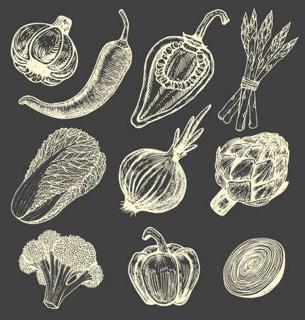 野菜手描きスケッチ スタイル要素を設定します。異なったコショウ。新鮮なキャベツ。アーティ チョーク、アスパラガス。カリフラワー、玉ねぎ  イラスト・ベクター素材