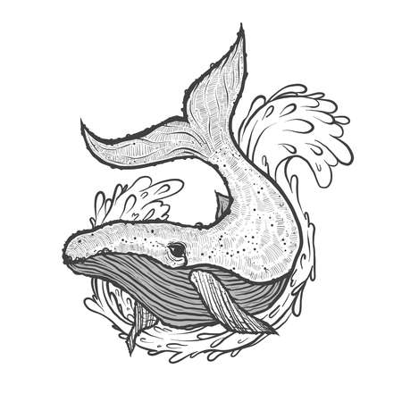 Hand drawn vector illustration of whale with wave and splash.  イラスト・ベクター素材