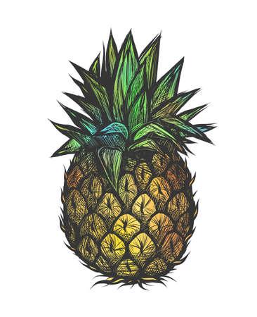 Hand getekend vectorillustratie van ananas. Kleurrijk ontwerp voor t-shirt Doodle stijl Stock Illustratie