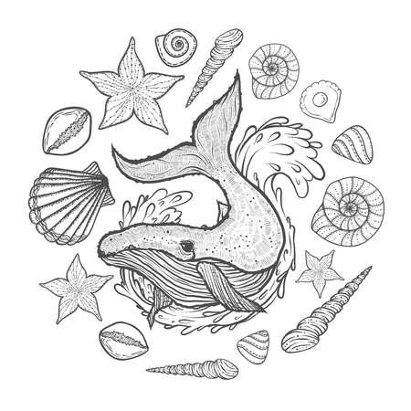 Hand drawn Marine elements in doodle style
