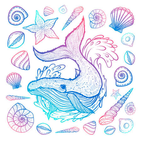 Poster with whale, seashells and starfishes. Marine background. Hand drawn vector illustration in doodle style. Sketch Vectores