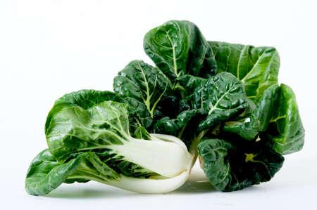romaine: romaine lettuce standing isolated on white,romaine lettuce isolated Stock Photo