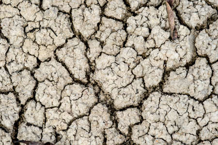 drained: Details of a dried cracked earth soil.,cracked earth