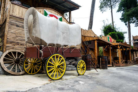 horse and carriage: The old horse carriage