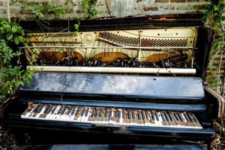 old decaying organ left to rot in field,Old moldy piano