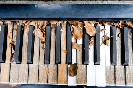 antique sleigh: old decaying organ left to rot in field,Old moldy piano