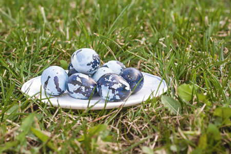 Some colored Easter eggs on the plate, on the green lawn. Quail eggs colored like camouflage on the white plate. Cloudy day, close up, side view. photo