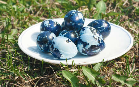 Some colored Easter eggs on the plate, on the green lawn. Quail eggs colored like camouflage on the white plate. Sunny day, side view, contrast, close up, front focus photo