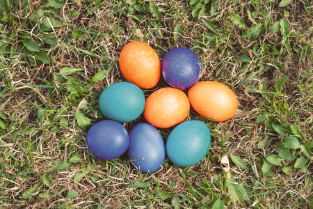 Eight Easter eggs on the lawn. Colored in blue, orange, emerald green and purple. Day light, top view. photo