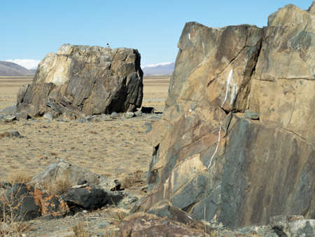 megalith: Huge megalith stones on a sacred place in steppe. Chuya steppe, daylight, bird on the far stone.