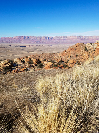 vermilion cliffs prairie grass