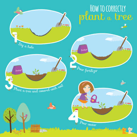 planting a tree: Vector concept illustration with time line infographic of planting tree process. Step instruction. Girl planting a tree. Cute illustration can be used like game in school.