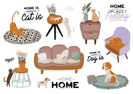Stylish Scandic living room interior - sofa, armchair, coffee table, plants in pots, lamp, home decorations. Cozy Autumn season. Modern comfy apartment furnished in Hygge style. Vector illustration Illusztráció