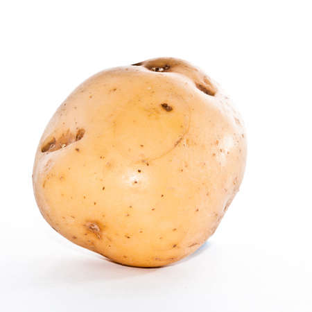 A King Edward potato, shot against a white background.