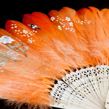 feathered: A vintage Japanese fan depicting birds and flowers.