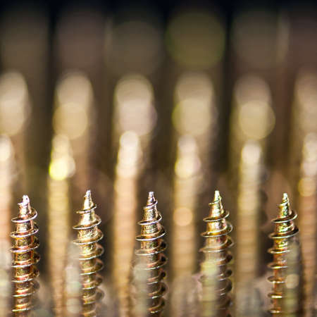 regiment: A regiment of upright copper screws.