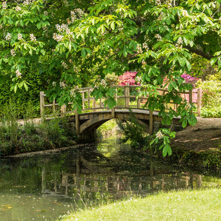 japanese bridge: The Japanese Bridge crosses over Top Pond at Exbury Gardens in the New Forest