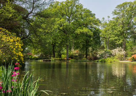 Looking across Top Pond at Exbury Gardens