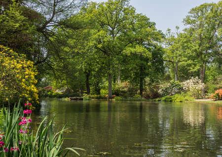 exbury: Looking across Top Pond at Exbury Gardens