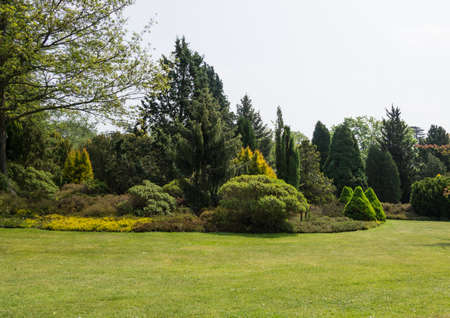 exbury: Part of the park landscape at Exbury Gardens,