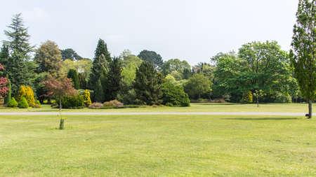 exbury: A panoramic view of part of Exbury Gardens
