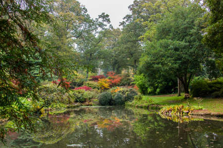 Colours of a Japanese style garden in autumn  Stock Photo