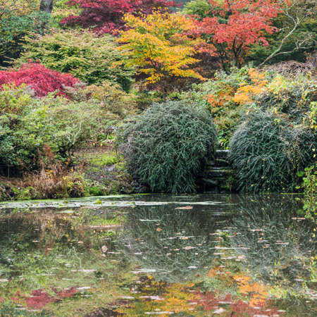 Looking across a pond at the colours of a Japanese style garden  photo