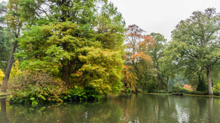 Looking over a pond at some autumn colours  Stock Photo