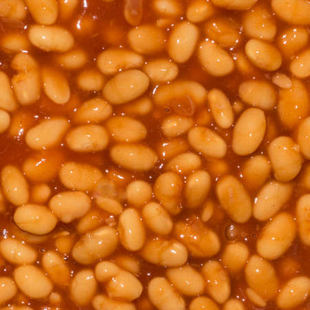 A close-up shot of some baked beans in tomato sauce