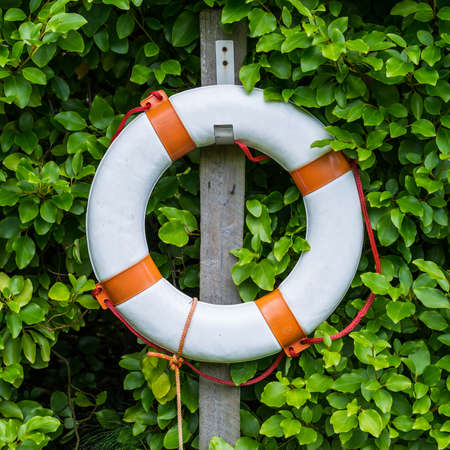 life preserver: A shot of a life preserver on a post next to a hedge.