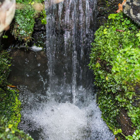 exbury: A close-up shot of a small waterfall.