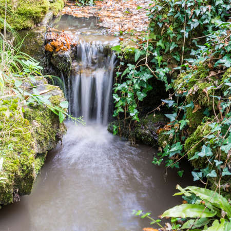 A shot of a small waterfall running through some vegetation  Stock Photo