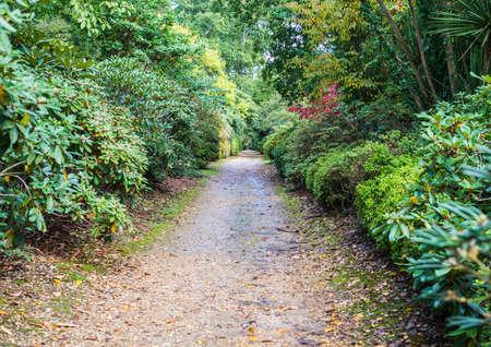 exbury: An early autumn shot of a walkway at Exbury Gardens in Hampshire, UK. Stock Photo